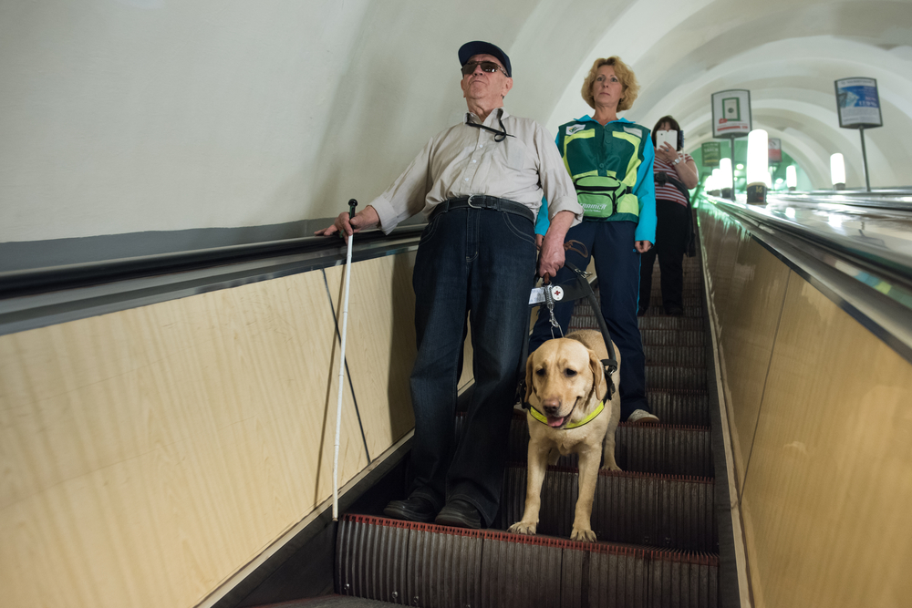 a vitally impaired person with a guide dog